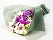 Large-flowered Phalaenopsis Bouquet