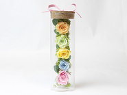 Glass Rose(Preserved Flower)