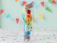 Rainbow Smile(Preserved Flower)
